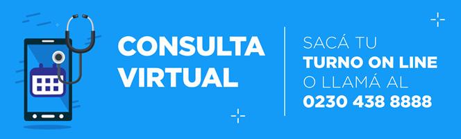 Consulta Virtual |