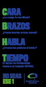www.world-stroke.org